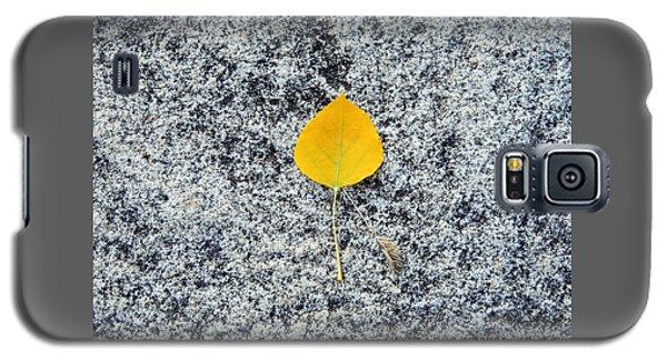 Aspen Leaf On Stone Galaxy S5 Case
