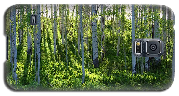 Galaxy S5 Case featuring the photograph Aspen Morning 1 by Marie Leslie