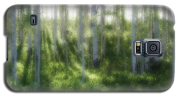 Galaxy S5 Case featuring the photograph Aspen Morning 2 by Marie Leslie