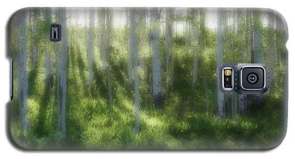Aspen Morning 2 Galaxy S5 Case by Marie Leslie