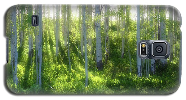 Galaxy S5 Case featuring the photograph Aspen Morning 3 by Marie Leslie