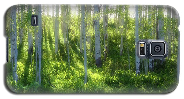 Aspen Morning 3 Galaxy S5 Case by Marie Leslie