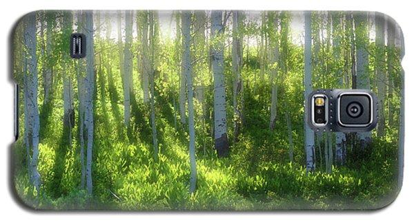 Aspen Morning 3 Galaxy S5 Case