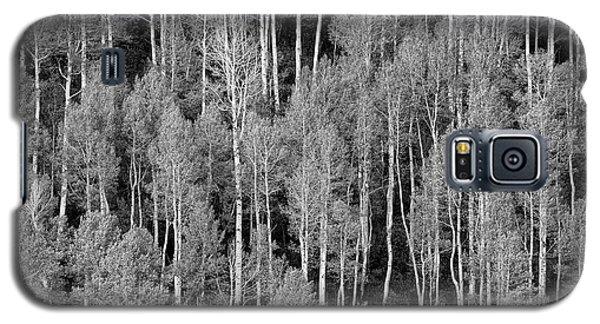 Aspen Pattern Galaxy S5 Case