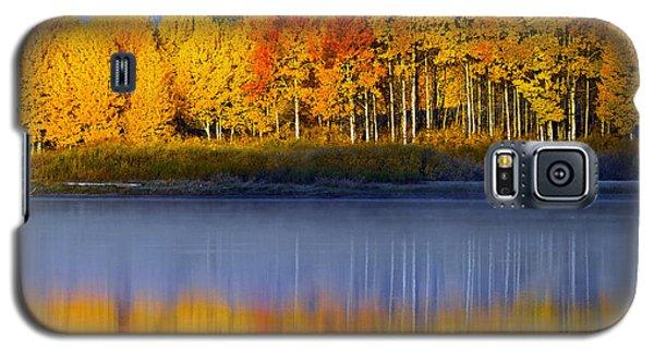 Aspen Reflection Galaxy S5 Case