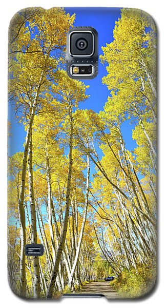 Galaxy S5 Case featuring the photograph Aspen Road by Ray Mathis