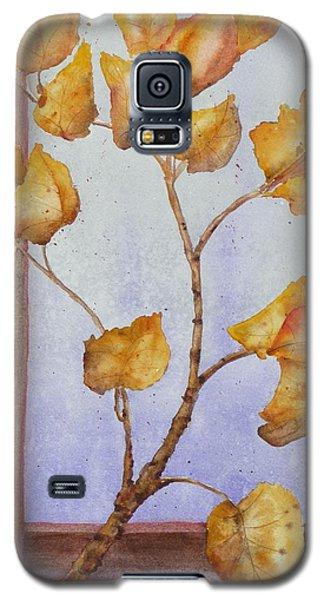 Aspen  Galaxy S5 Case