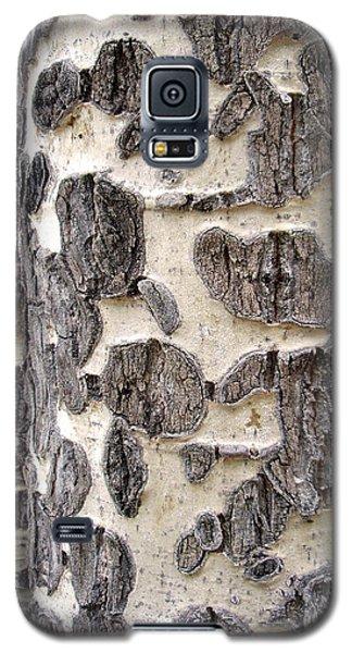 Aspen Scars Galaxy S5 Case