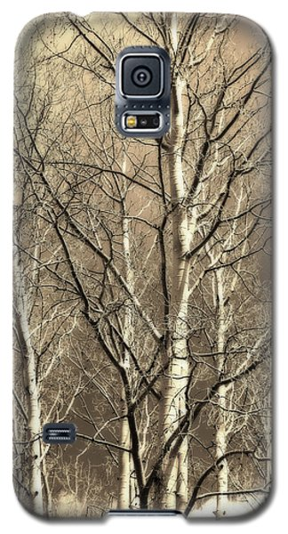 Galaxy S5 Case featuring the photograph Aspen Sky White Mountains Arizona by Donna Greene