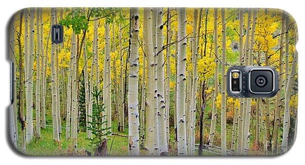 Aspen Slope Galaxy S5 Case