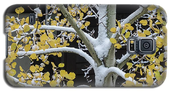 Aspen Snow Galaxy S5 Case