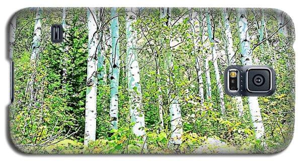 Aspen Splender Steamboat Springs Galaxy S5 Case by Joseph Hendrix