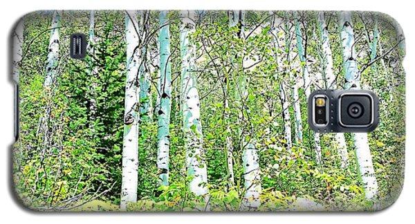 Aspen Splender Steamboat Springs Galaxy S5 Case