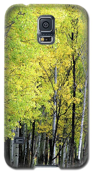Aspen Splendor Galaxy S5 Case
