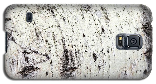 Galaxy S5 Case featuring the photograph Aspen Tree Bark by Christina Rollo