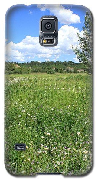 Aspen Tree In Meadow With Wild Flowers Galaxy S5 Case by Jim Sauchyn