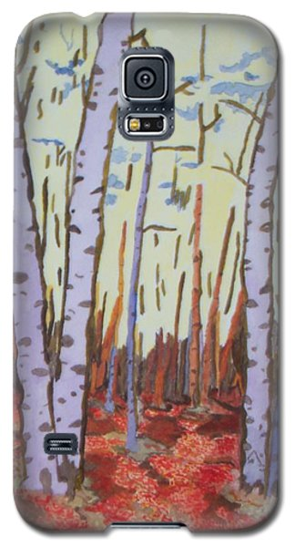 Aspen Trees Galaxy S5 Case by Connie Valasco