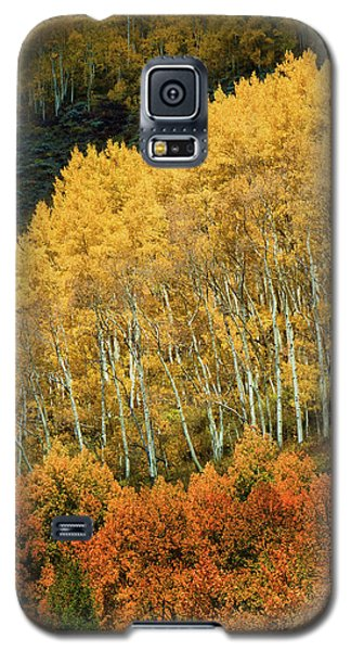 Galaxy S5 Case featuring the photograph Aspen Waves by Dana Sohr