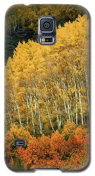 Aspen Waves Galaxy S5 Case