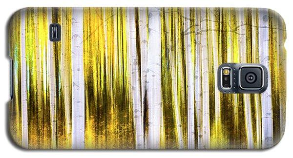 Aspen Wonderland Galaxy S5 Case