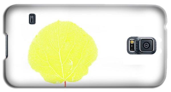 Aspen Yellow Galaxy S5 Case