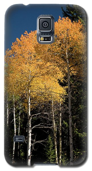Galaxy S5 Case featuring the photograph Aspens And Sky by Steve Stuller
