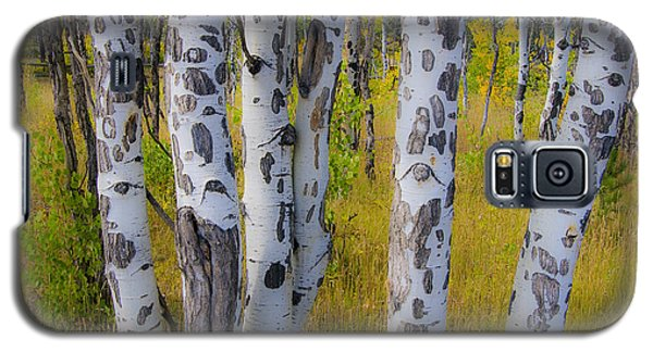 Galaxy S5 Case featuring the photograph Aspens by Gary Lengyel