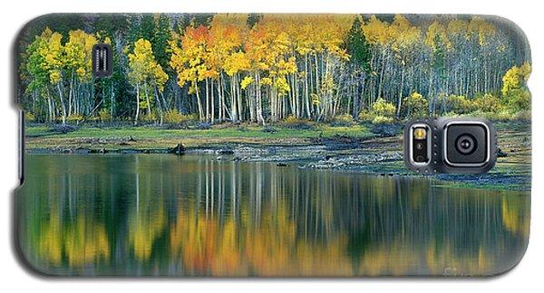 Aspens In Fall Color Along Lundy Lake Eastern Sierras California Galaxy S5 Case