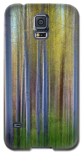 Aspens In Springtime Galaxy S5 Case