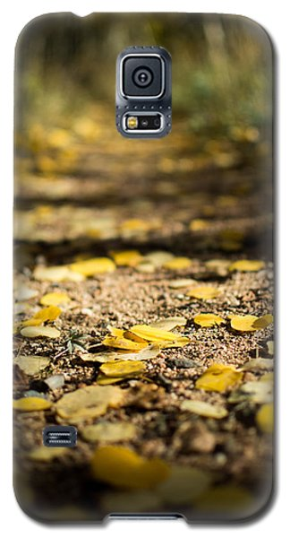 Aspen Leaves On Trail Galaxy S5 Case