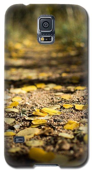 Aspen Leaves On Trail Galaxy S5 Case