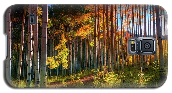 Galaxy S5 Case featuring the photograph Aspens Of The West Elk Mountains by John De Bord