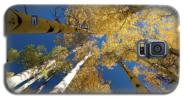 Galaxy S5 Case featuring the photograph Aspens Up by Steve Stuller