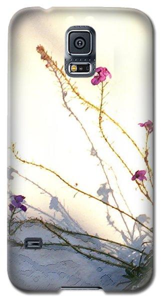 Aspire Galaxy S5 Case
