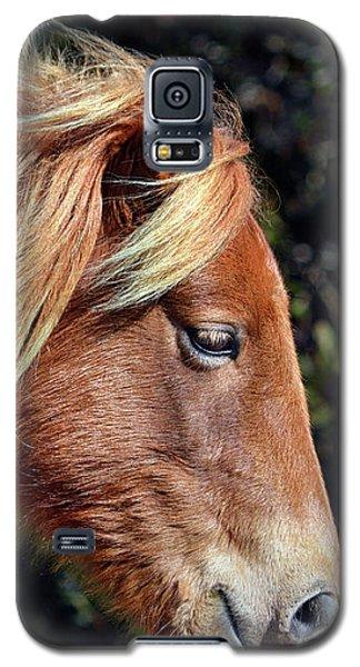 Assateague Horse Sarah's Sweet Tea Right Profile Galaxy S5 Case