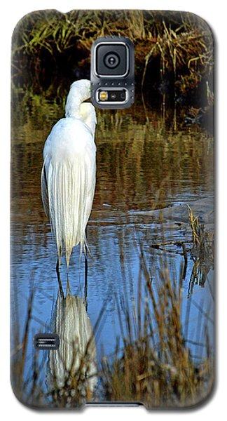 Assateague Island Great Egret Ardea Alba Galaxy S5 Case