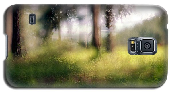 At Menashe Forest Galaxy S5 Case