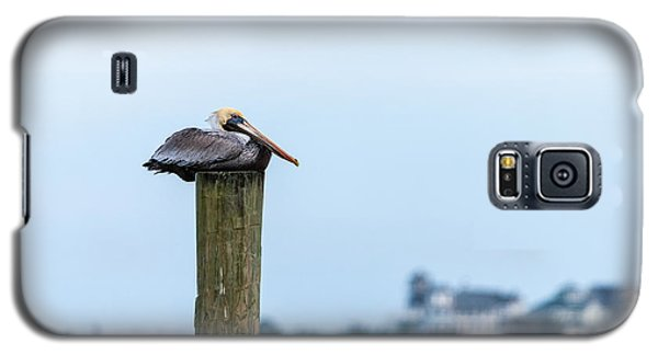 Galaxy S5 Case featuring the photograph At Rest by Gregg Southard