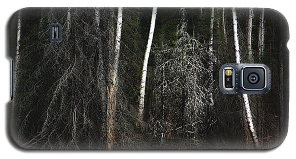At The Edge Of The Forest  Galaxy S5 Case by Jim Vance