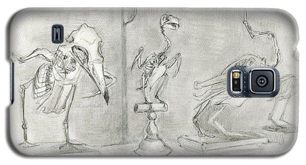 Bird Skeletons Galaxy S5 Case
