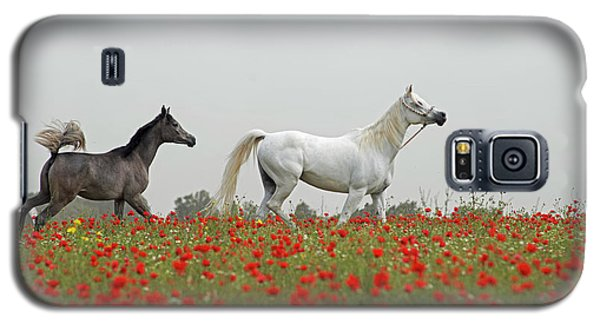 At The Poppies' Field... Galaxy S5 Case