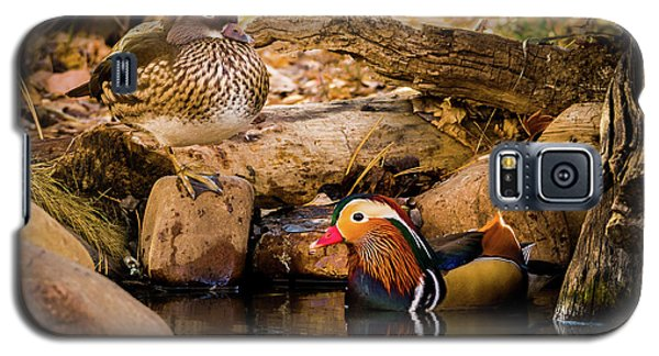 At The Waters Edge - Mandarin Ducks Galaxy S5 Case