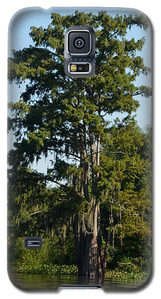 Atchafalaya Basin 11 Galaxy S5 Case by Maggy Marsh