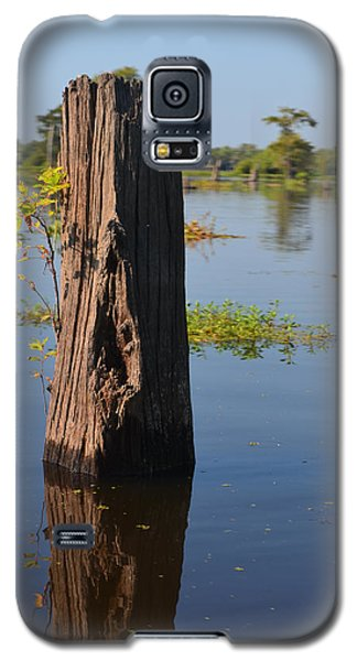 Atchafalaya Basin 22 Galaxy S5 Case by Maggy Marsh