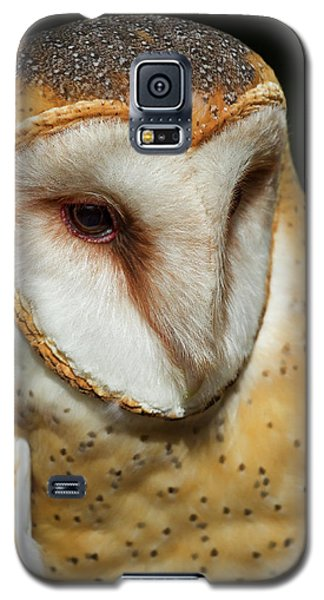Galaxy S5 Case featuring the photograph Athena The Barn Owl by Arthur Dodd