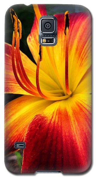 Athenagoras Of Syracuse Galaxy S5 Case
