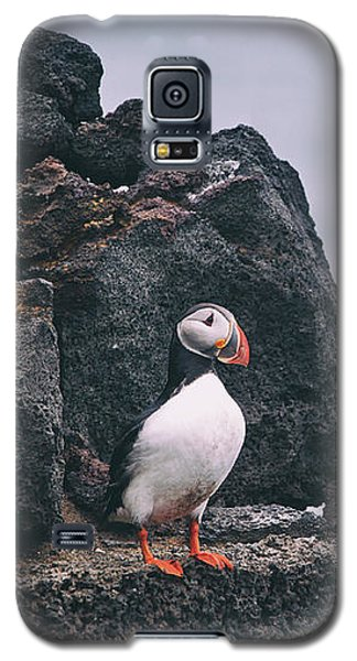 Atlantic Puffin Galaxy S5 Case by Happy Home Artistry