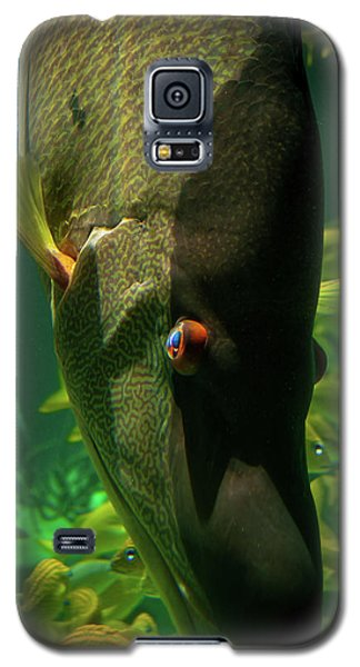 Atlantis Friends Galaxy S5 Case