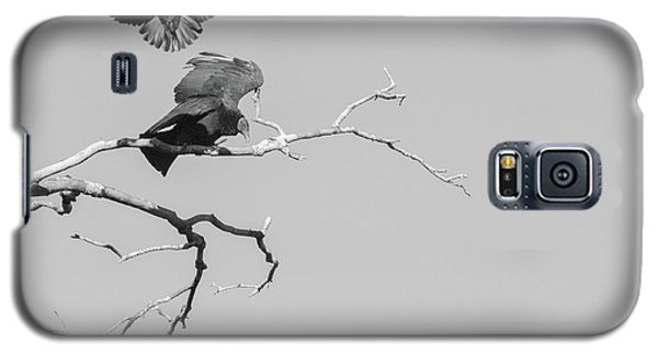 Galaxy S5 Case featuring the photograph Attack On A Buzzard by Carolyn Dalessandro