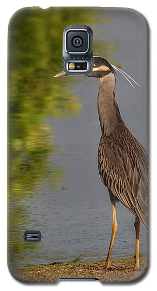 Galaxy S5 Case featuring the photograph Attentive Heron by Jean Noren